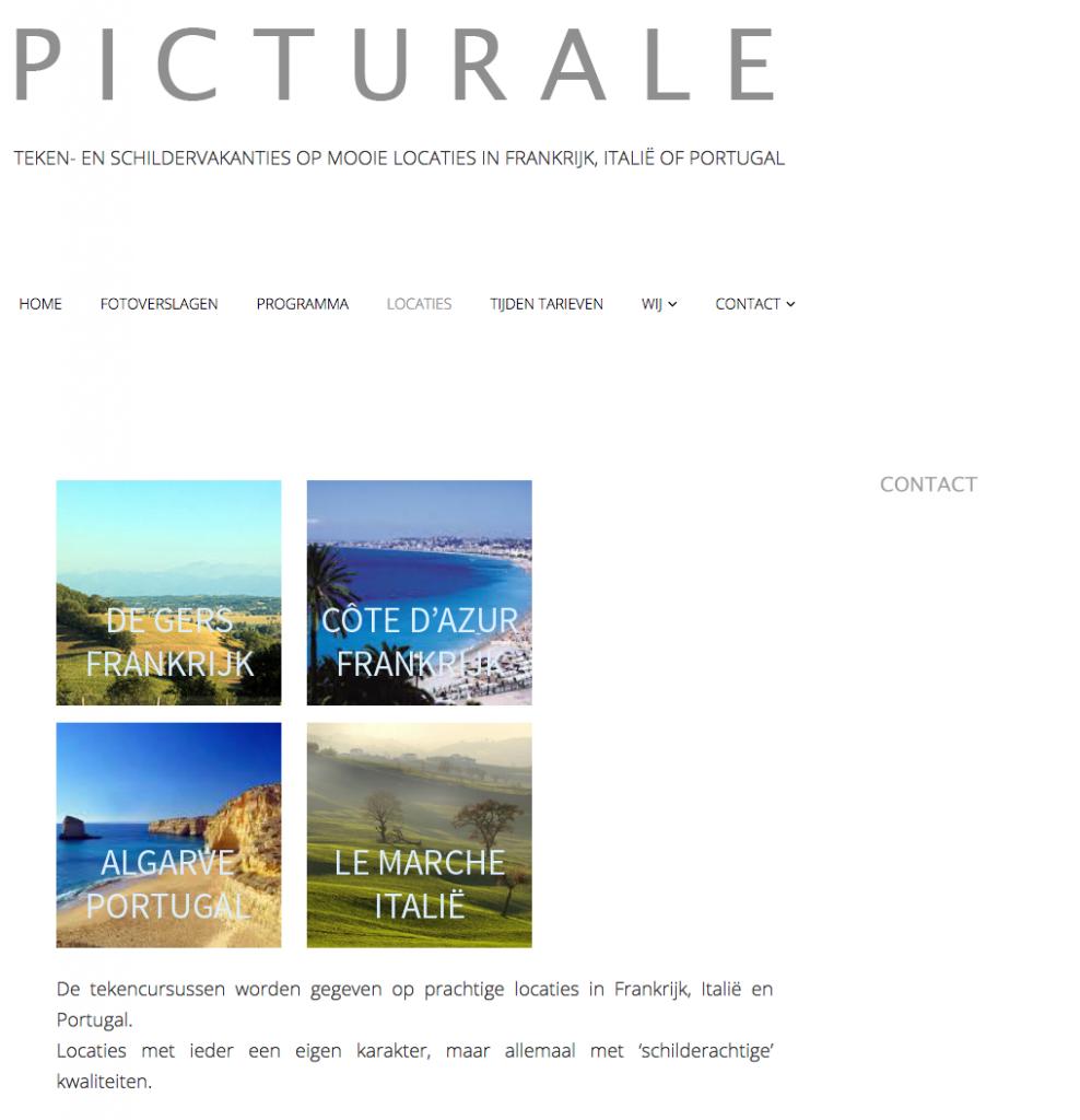wordpress website picturale