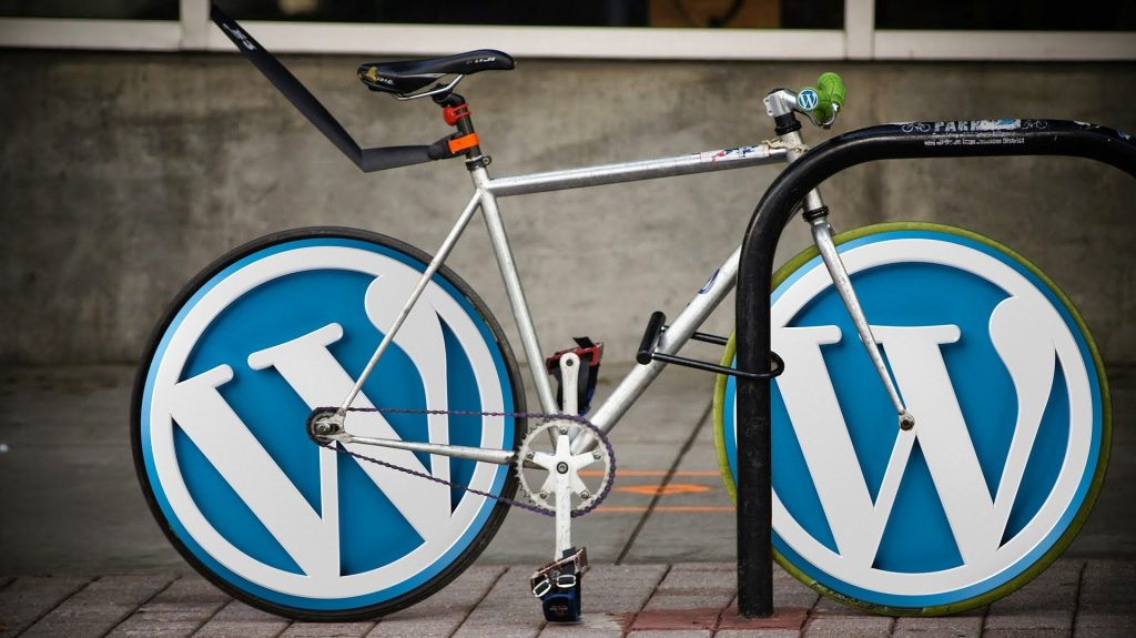 Cursus WordPress Rotterdam