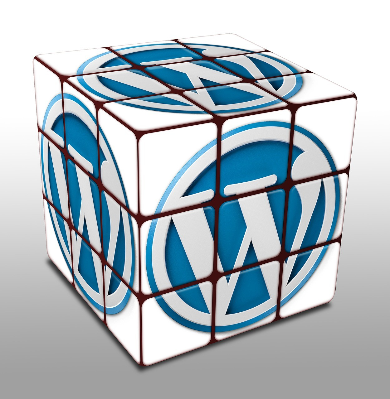 Een WordPress plugin kiezen
